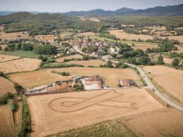 Camp de la Pera on hi ha el llaç pels polítics empresonats | Imatge de Fran Arnau