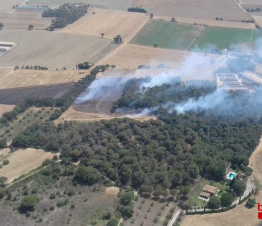 Incendi a Forallac | Imatge dels Bombers de la Generalitat